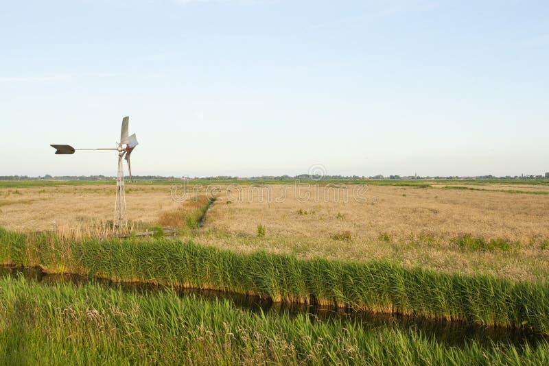 Wormer- en Jisperveld, Holandia; Wormer- en Jisperveld, sieć zdjęcie royalty free