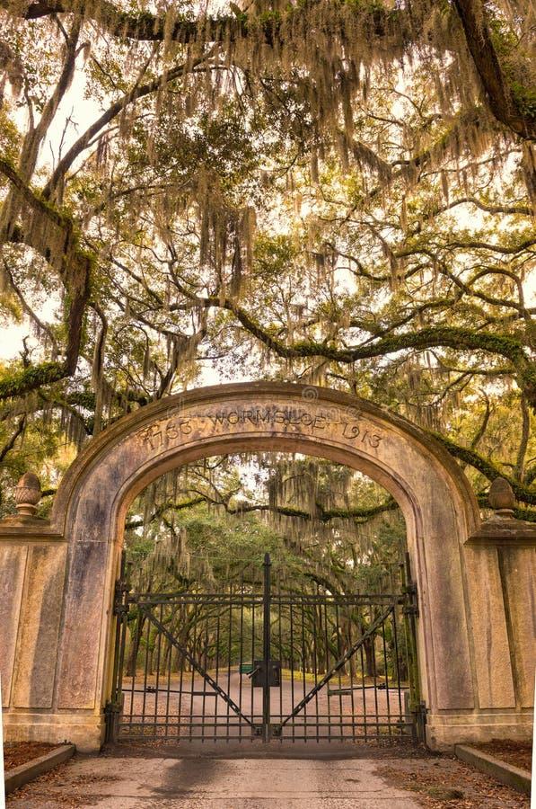 Wormsloe Plantation Historic Site near Savannah, Georgia royalty free stock photos