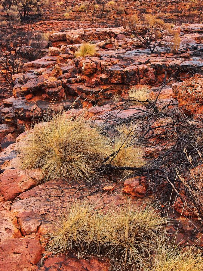 Worn and Eroded Red Rocks, Kings Canyon, Red Centre, Australia royalty free stock photo
