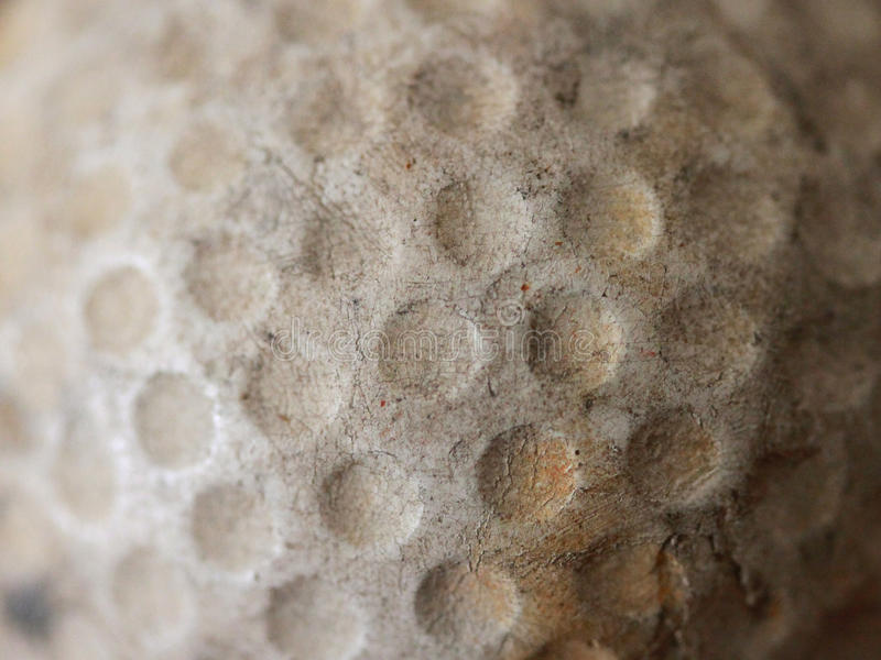 Download Worn Old Antique Golfball stock image. Image of macro - 16656943