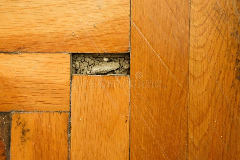 Worn out wooden floor of sports hall. Light wood flooring worned by use and time. Worn out wooden floor of sports hall. Light wood flooring worned by use with royalty free stock photos