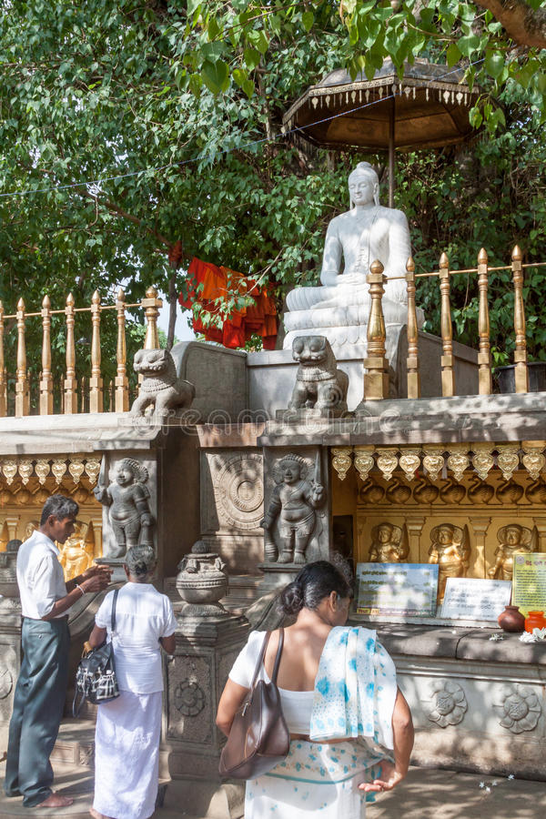 Worship of Buddha stock images