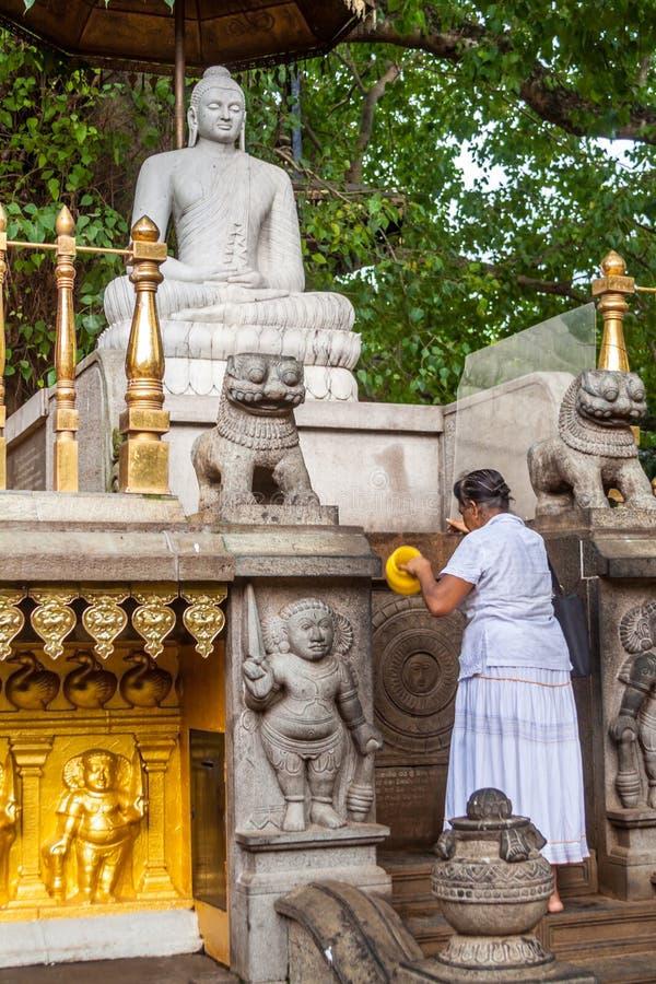Worship of Buddha royalty free stock photos