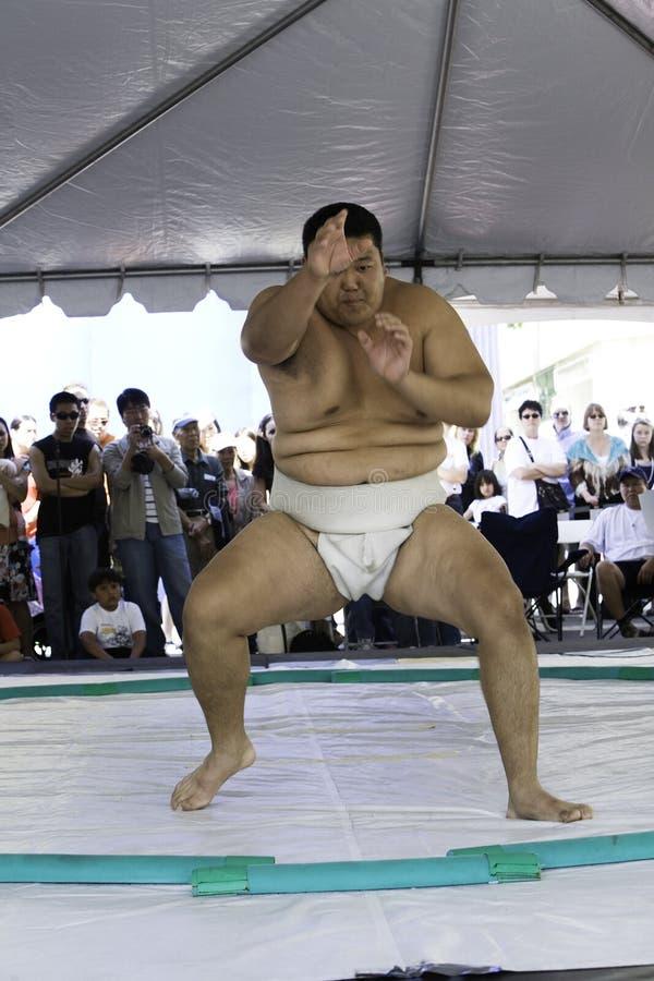 Worstelaar 15 van Sumo stock foto