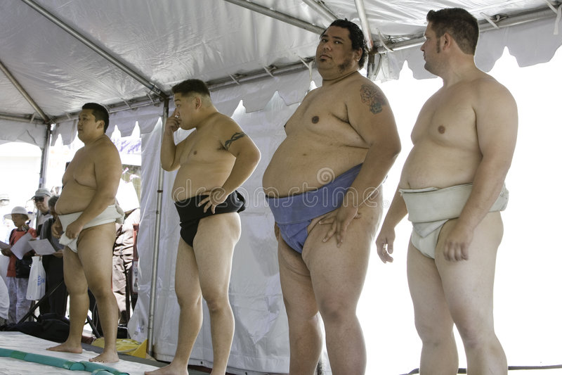 Worstelaars 13 van Sumo stock fotografie