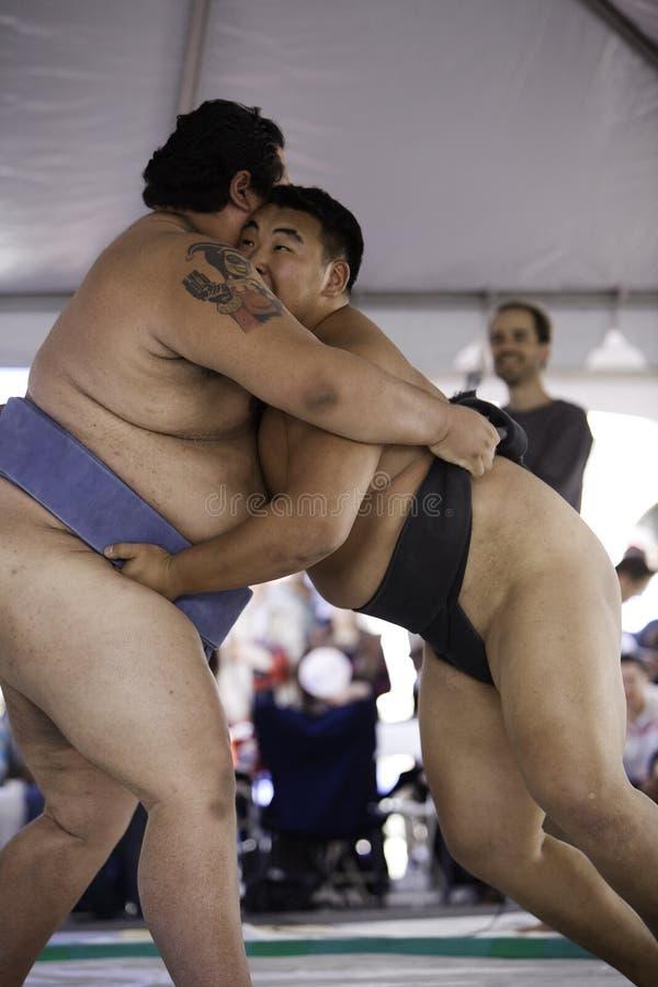 Worstelaars 26 van Sumo stock foto's