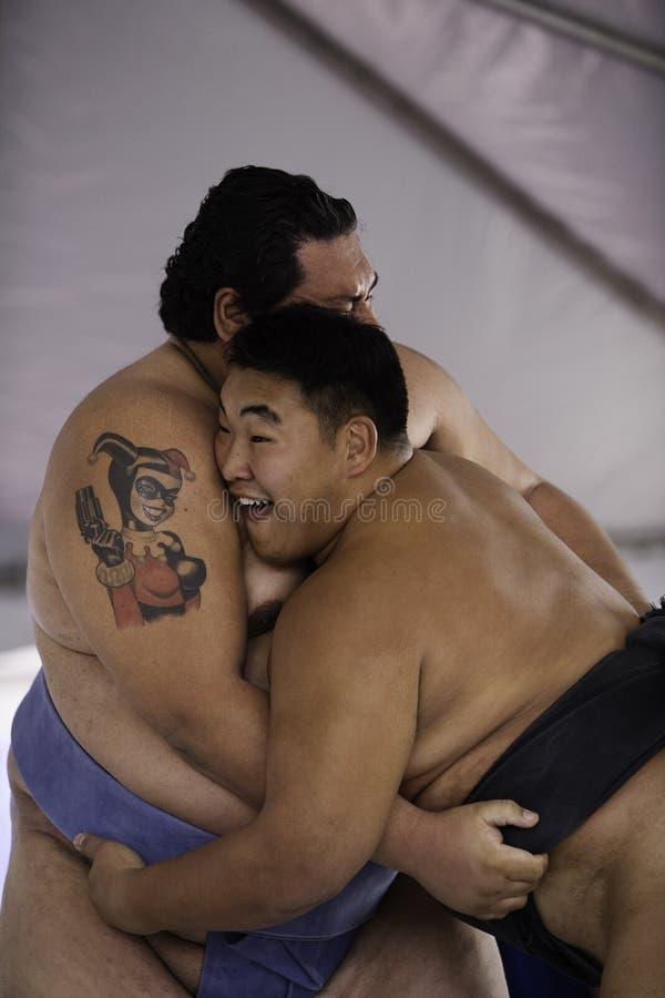 Worstelaars 27 van Sumo stock fotografie
