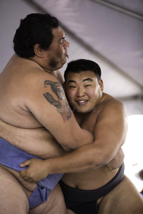 Worstelaars 28 van Sumo stock afbeeldingen