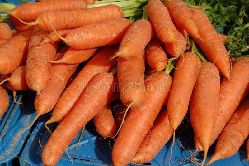 wortelen biologische markt royalty-vrije stock foto