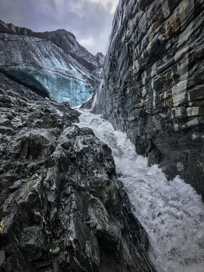 Worthington glaciär, Alaska arkivfoton