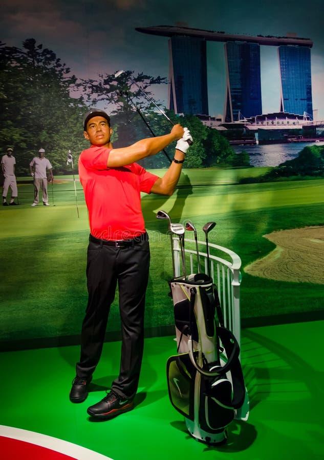 Wosk postać Tiger Woods w Madame Tussauds Singapur fotografia royalty free