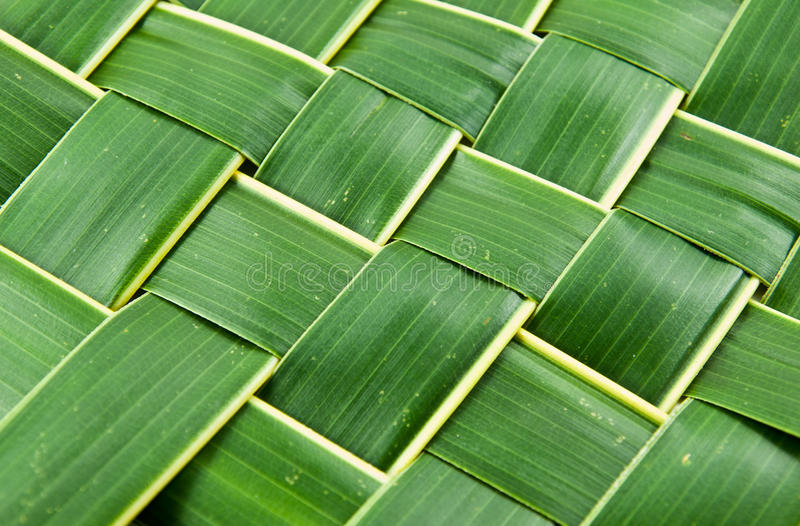 Woven coconut leaves texture. Woven green coconut leaves texture royalty free stock image