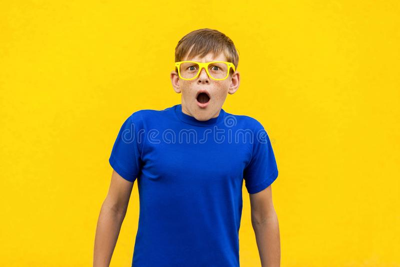 Wow! Πορτρέτο του φακιδοπρόσωπου αγοριού με τη συγκλονισμένη έκφραση του προσώπου στοκ φωτογραφίες με δικαίωμα ελεύθερης χρήσης
