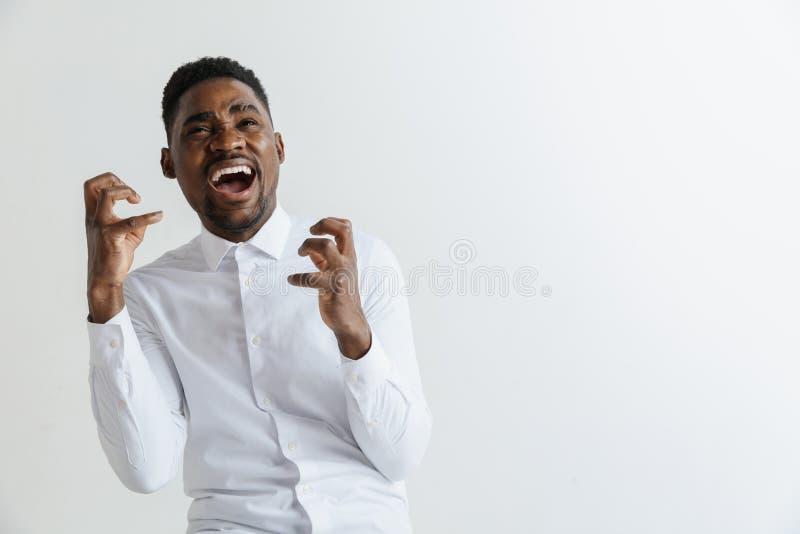 wow Aantrekkelijk mannelijk helft-lengte voorportret op grijze studio backgroud Jonge afro emotionele verraste gebaarde mens royalty-vrije stock afbeeldingen