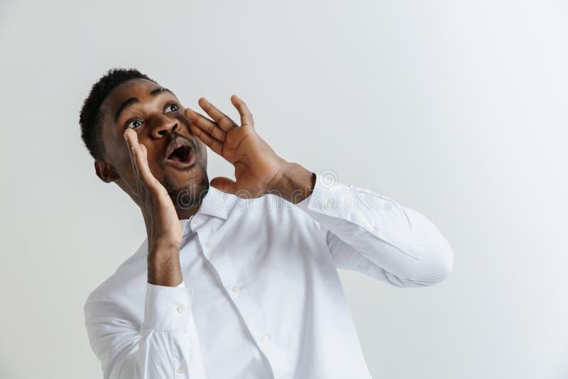 wow Vorderes Porträt des attraktiven männlichen Kniestücks auf grauem Studio backgroud Junger emotionaler überraschter bärtiger A stockfotos