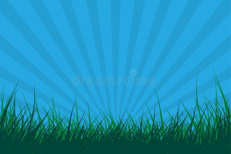 wpływu eksplozji słońca trawy ilustracja wektor