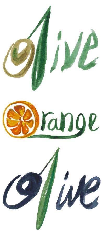 Wpisowe oliwki i pomarańczowa akwarela ilustracja wektor
