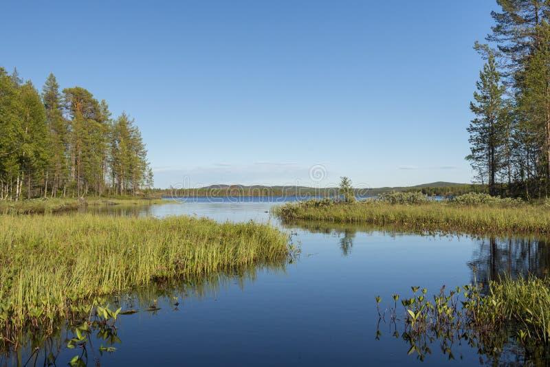 Wpust spokojny strumień jezioro z drzewami na obich stronach troszkę zdjęcie royalty free