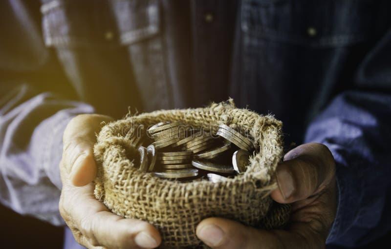 Wręcza mienie pieniądze złociste monety z rośliną w ręce dla pieniężnego i oszczędzania pieniądze pojęcia fotografia royalty free