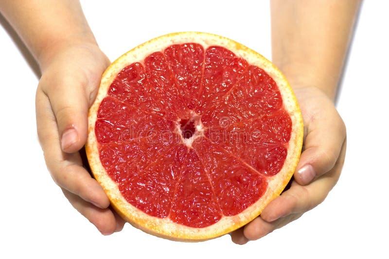Wręcza dziecka mieniu czerwień grapefruitową na białym odosobnionym tle pojęcia zdrowe jedzenie Ręka dzieciak trzyma grapefruitow zdjęcia royalty free