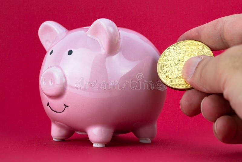 Wręcza kładzenia cryptocurrency w prosiątko banka Cryptocurrency inwestyci pojęcie fotografia stock