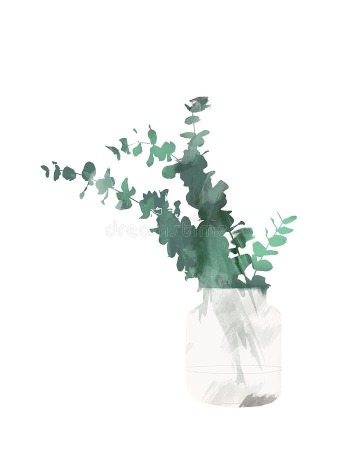 Wręcza malującego eukaliptusa w butelce odizolowywających na białym tle wazie lub Kwiecista botaniczna klamerki sztuka dla projek ilustracji