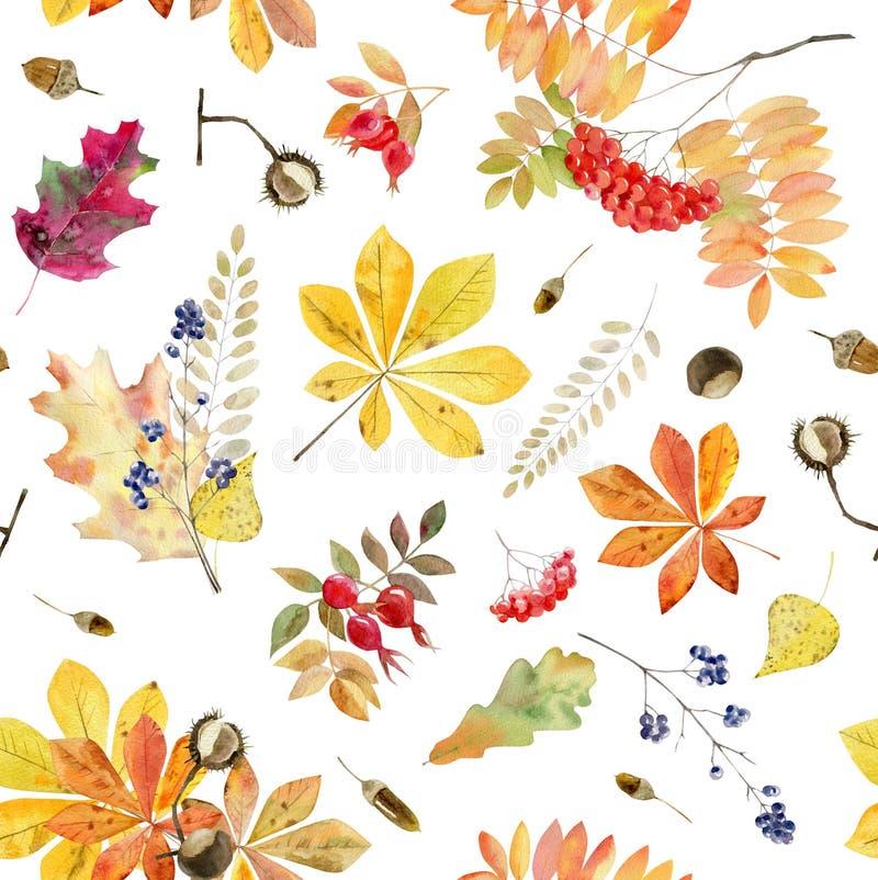 Wręcza malującej akwareli bezszwowego wzór jesień liście ilustracji