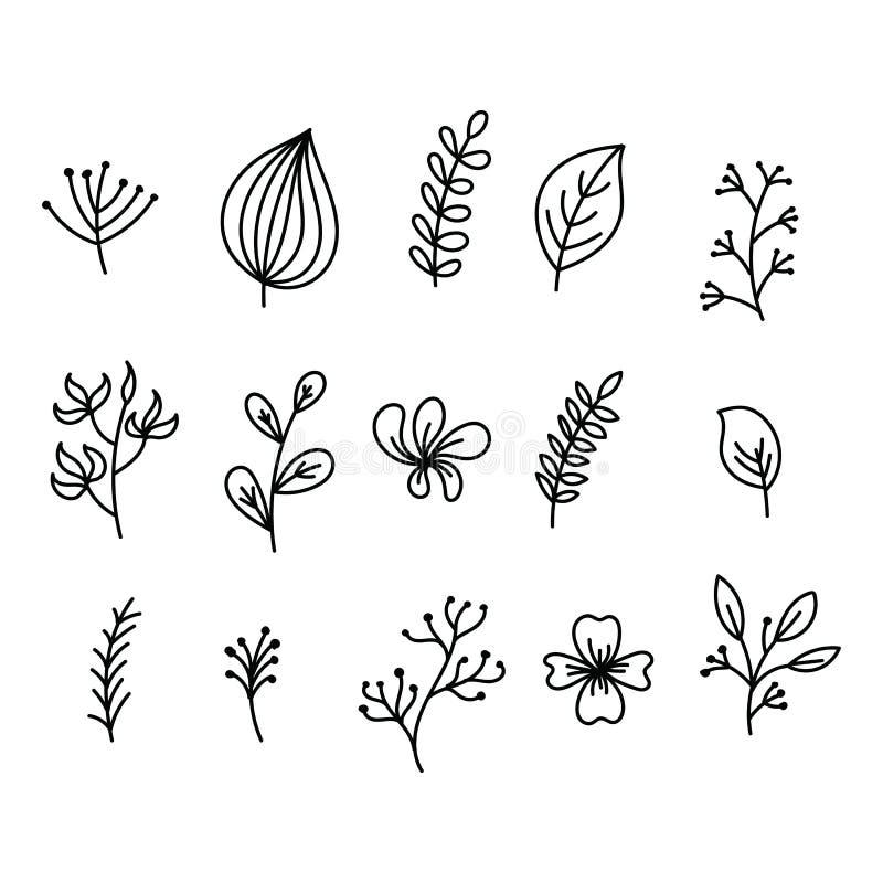 Wręcza malujących ikona liście drzewa i krzaki, kwitnie kwitną z płatkami, pączkami i lasów ziele, Płynąć rośliny i royalty ilustracja