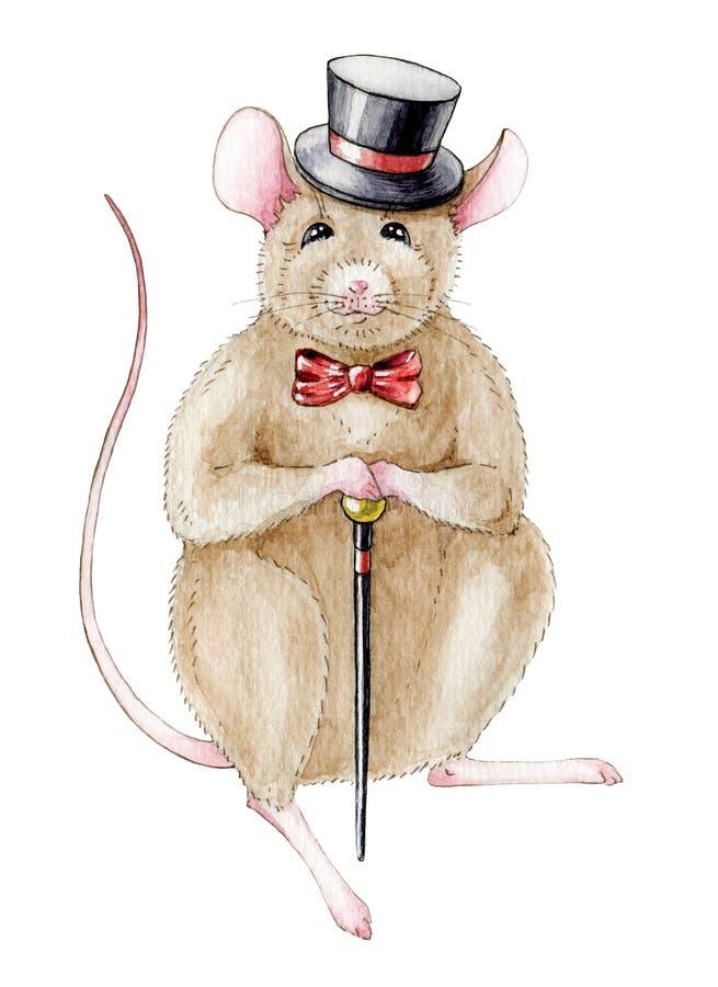 Wręcza patroszoną akwareli ilustrację mysz szczur w kapeluszu z trzciną w ręce ?mieszna mysz odizolowywaj?ca na bia?ym tle ilustracja wektor