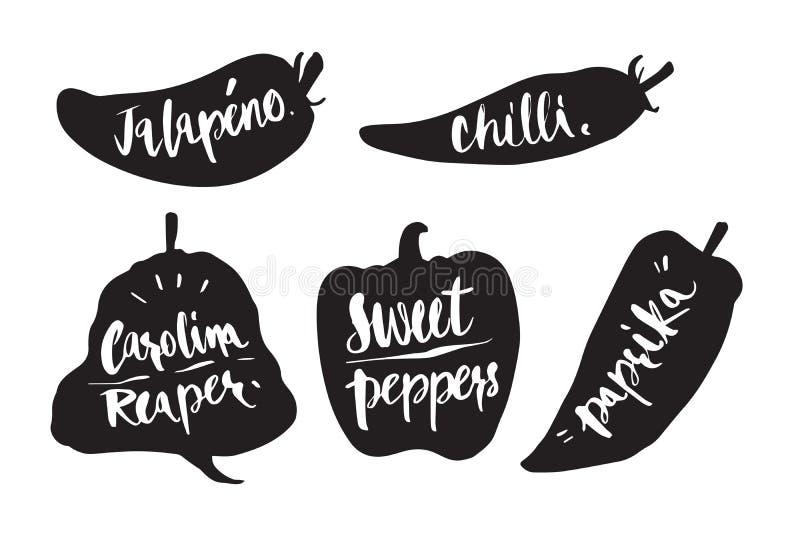 Wręcza patroszoną kaligrafię w sylwetki chili, Mój jalapeno, chili, ilustracja wektor