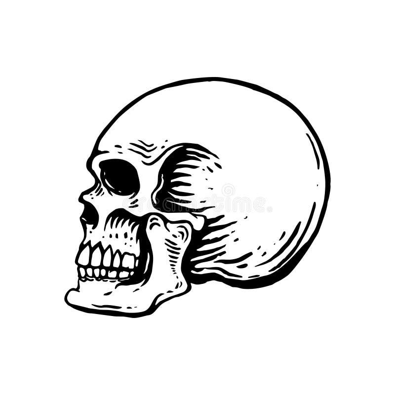 Wręcza patroszoną ludzką czaszki ilustrację na białym tle Projektuje element dla loga, etykietka, emblemat, znak, plakat, t koszu ilustracja wektor