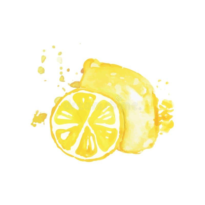 Wręcza patroszonego akwarela obraz cały i plasterek cytryna owoce cytrusowe Organicznie i smakowity jedzenie zdrowego żywienia ilustracja wektor