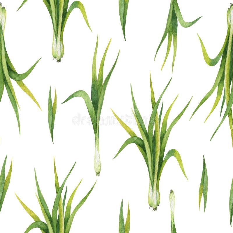 Wręcza patroszonej akwareli bezszwowego wzór cytryny trawa ilustracja wektor