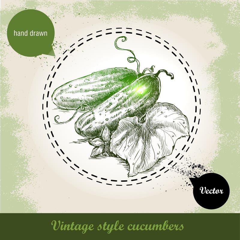 Wręcza patroszonych świeżych całych ogórki z liściem i kwiatem Rocznika nakreślenia stylu eco organicznie warzywo ilustracji