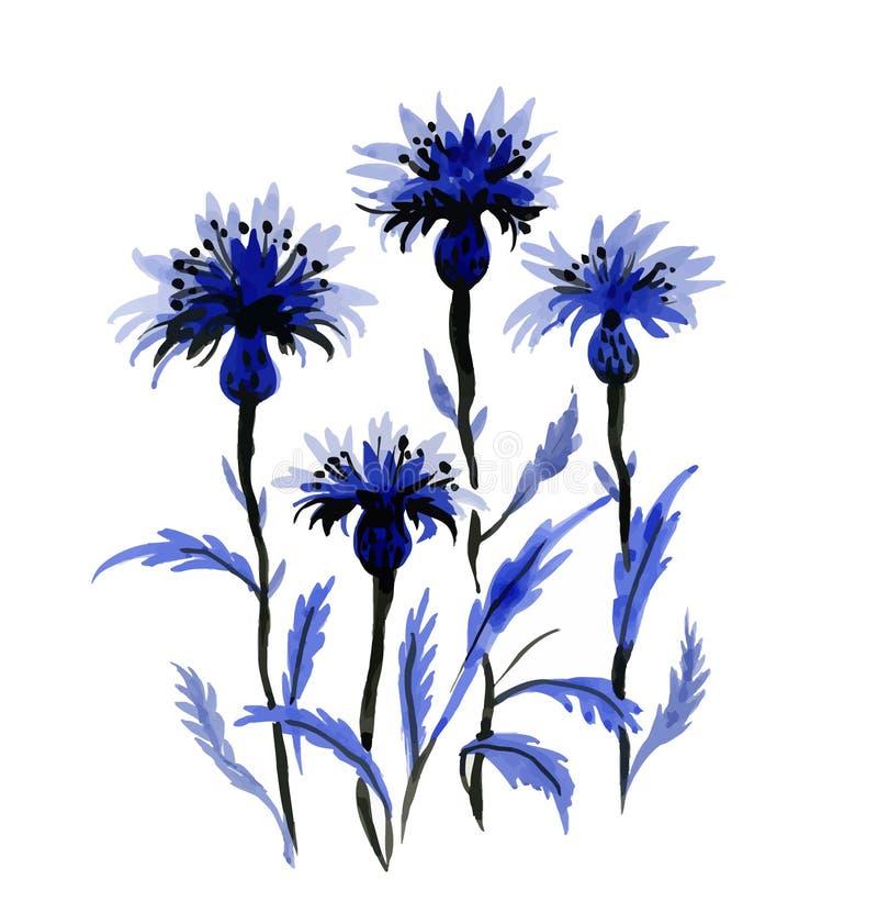 Wręcza patroszonych pięknych wildflowers odizolowywających na białym tle ilustracji