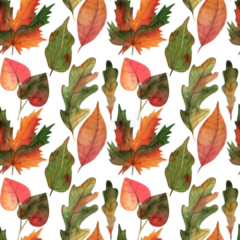 Wręcza patroszonym akwareli jesieni liściom bezszwową deseniową ilustrację dla karcianego robić, papieru, tkaniny i druku pakuje, royalty ilustracja