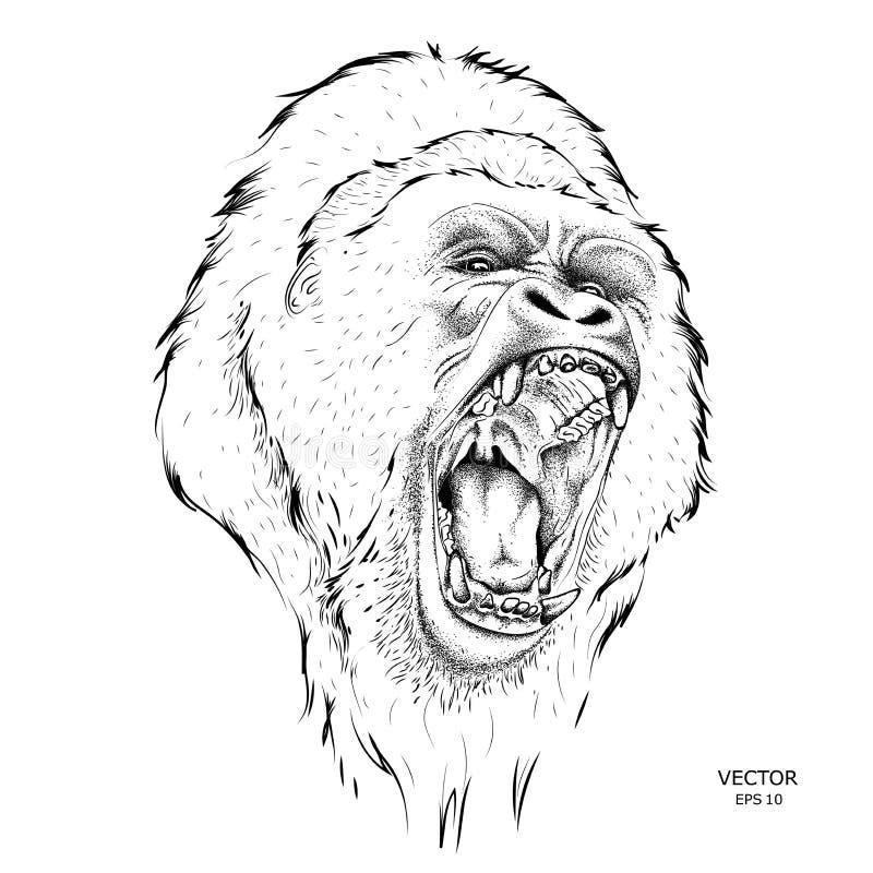 Wręcza rysujący lider paczka goryle również zwrócić corel ilustracji wektora ilustracji