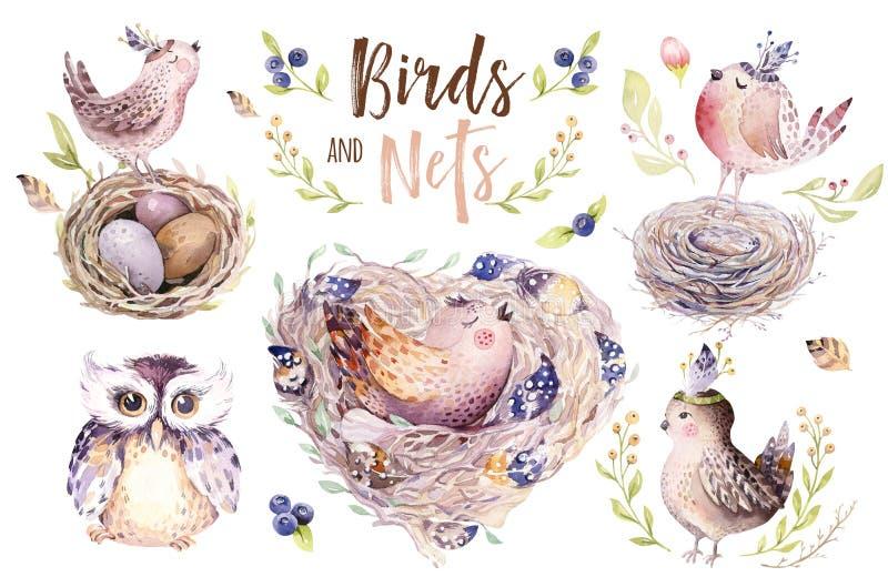 Wręcza rysunkowej Easter akwareli latającego kreskówka ptaka, jajek z liśćmi, gałąź i piórkami i, Watercolour wiosny sztuka royalty ilustracja