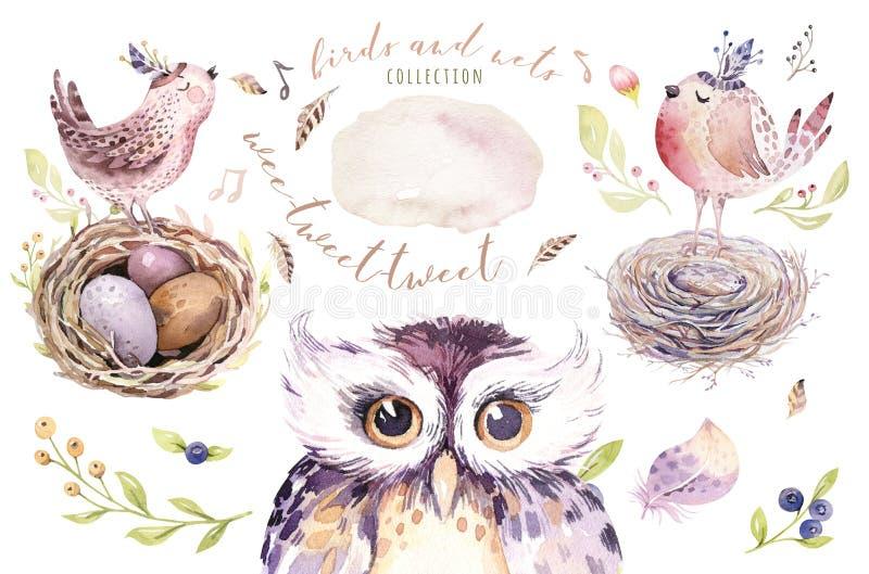 Wręcza rysunkowej Easter akwareli latającego kreskówka ptaka, jajek z liśćmi, gałąź i piórkami i, Watercolour wiosny sztuka ilustracji