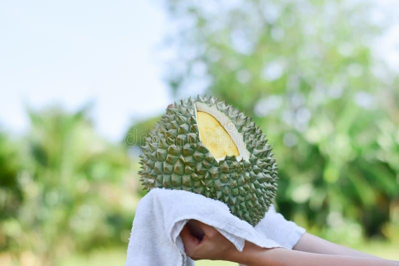 Wr?cza trzyma? ?wie?ego durian na natury tle, Tropikalna sezonowa owoc, kr?lewi?tko owoc od Tajlandia zdjęcia stock