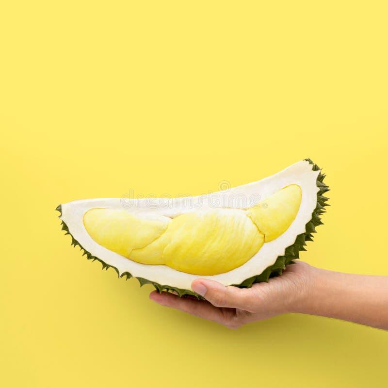 Wręcza trzymać świeżego rżniętego durian na żółtym tle obraz royalty free