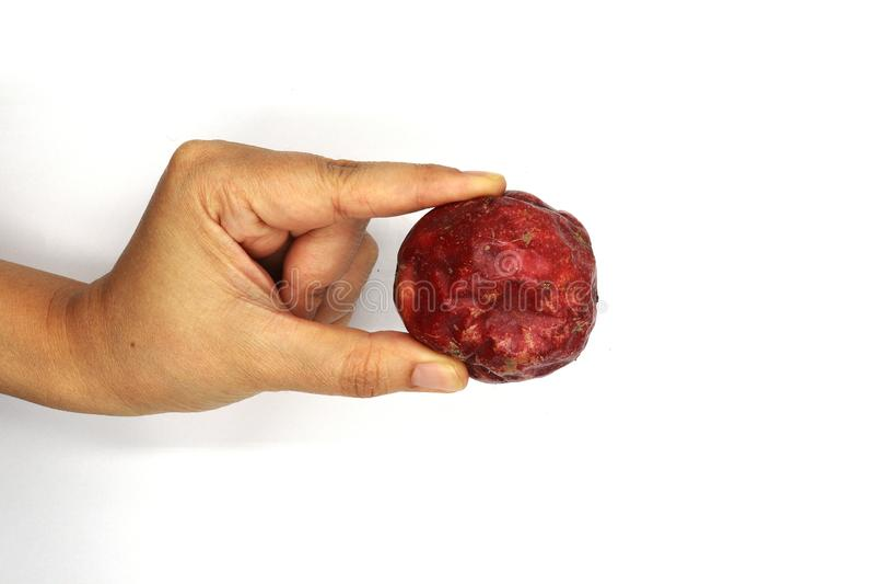 Wręcza trzymać pasyjną owoc odizolowywająca na białym tle, odgórny widok zamknięty w górę fotografia royalty free