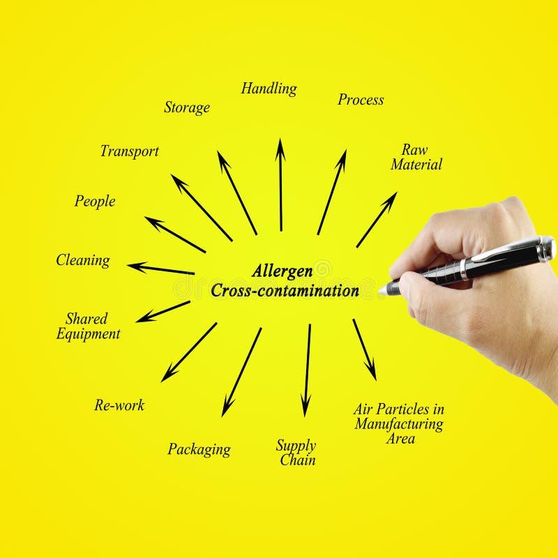 Wręcza writing element Allergen krzyża kontaminowanie dla busin zdjęcie stock