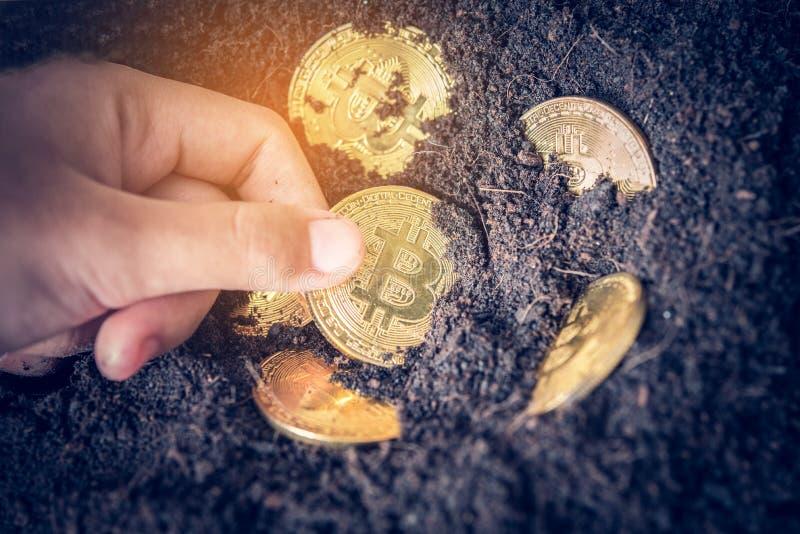 Wręcza z ziemi że wybory złociste monety pojęcia incre - obrazy royalty free