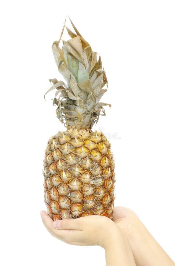 Download Wręcza ananasa obraz stock. Obraz złożonej z chwyt, biały - 13339767