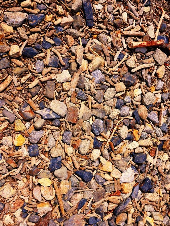 Wrakstukken op een rivierbed in Patagonië stock foto's