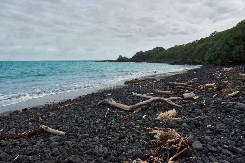 Wrakstukken op het Strand op McKenzie-het Eiland van Baairangitoto stock foto