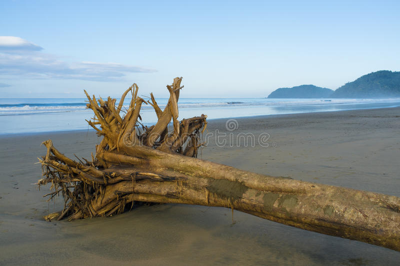 Wrakstukken op tropisch strand stock afbeeldingen