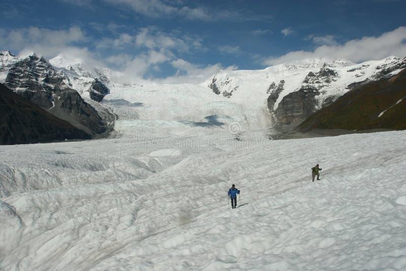 Wrangell-St. Elias stock foto's