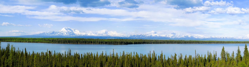 Wrangell-St Elias National Park och sylt, Alaska arkivbild